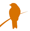 Orange Illustration einer Amsel als Logo für Dr. Thomas Vogl Supervision & Coaching